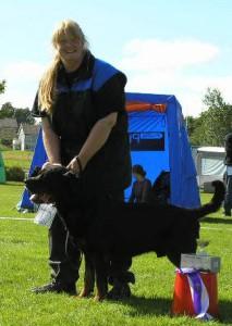 Rottweiler INT NUCH DKUCH AD KORAD Bittebit´s Knerten-Bjarne Ägare Anne-Marit och Geir Traaholt, Norge
